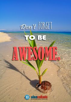 Don't forget to be AWESOME. http://alancollado.blogspot.mx/2013/08/dont-forget-to-be-awesome.html#.UhAbY9KQXSg