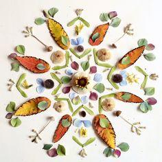 Mandala by Flora Forager Art Floral, Flower Of Life, Flower Art, Art Et Nature, Arte Fashion, Sacred Geometry Tattoo, Fleurs Diy, Alex Grey, Jamie Hewlett