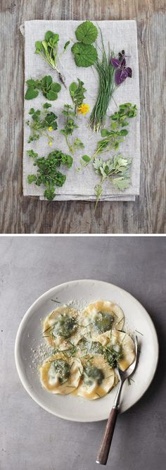 Fascinating Foraging & Wild Herb Ravioli Recipe | All photos from Foraged Flavor by Colin Clark, feature & recipe on Garden Therapy