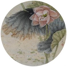 Plant Painting, Watercolour Painting, Japanese Painting, Chinese Painting, Oriental Flowers, Lotus Pond, Chinese Brush, China Art, Japan Art
