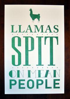 Items similar to Llamas Spit Poster on Etsy Llama Face, Alpacas, Cute Llama, Funny Llama, Funny Jokes, Llama Arts, Llama Alpaca, No Drama