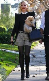 Gwen Stefani plaid shorts