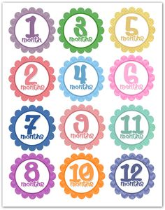 Photo-A-Month Baby Onesies {free printables}