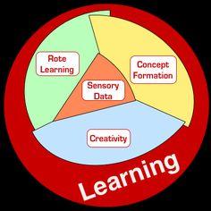 Mark Treadwell (concept curriculum): how the brain learns