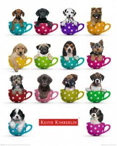 Keith Kimberlin - coffee mugs - plakat