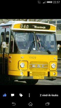 Nzh bus