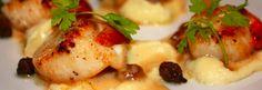 hotel9 Chicken, Meat, Food, Essen, Meals, Yemek, Eten, Cubs
