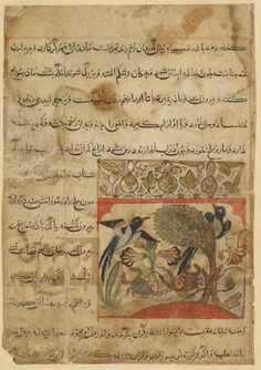 Folio from a Manafi'al-hayawan (Usefulness of animals) by Ibn Bakhtishu (d.1058); recto: Magpies and scorpions; verso: text, Characteristics of scorpion and crab 1315 Il-Khanid period  Ink, opaque watercolor and gold on paper H: 10.7 W: 10.0 cm  Iran  Purchase F1928.6  Freer-Sackler | The Smithsonian's Museums of Asian Art