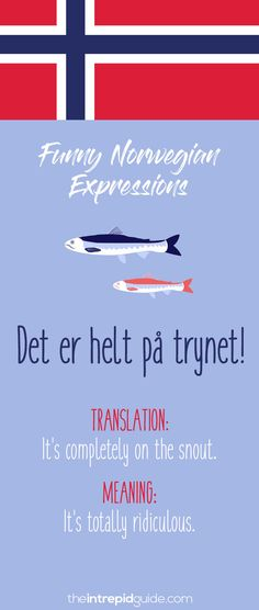 Norwegian Sayings and Idioms - Det er helt på trynet! Norway Language, Norwegian Words, Scenic Photography, Night Photography, Photography Tips, Landscape Photography, Norway Travel, Blog Names, Learn A New Language
