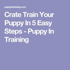 Crate Train Your Puppy In 5 Easy Steps - Puppy In Training Puppy Crate, Crate Training, Training Your Puppy, Puppy Love, Crates, Puppies, Easy, Animals, Animais