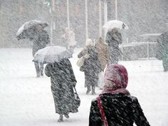 """""""In almost any geographical location, harsh weather conditions can, and will, strike..."""""""