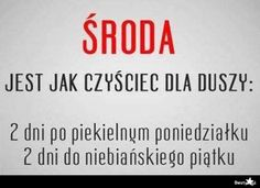 BESTY.pl - Środa Polish Memes, Adorable Quotes, Weekend Humor, Ways To Be Happier, Motto, Favorite Quotes, Psychology, Funny Quotes, Lol