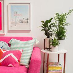 "2,988 aprecieri, 45 comentarii - Joy Cho / Oh Joy! (@ohjoy) pe Instagram: ""A peek at a very pink living room coming at ya tomorrow! 🌿💕"""