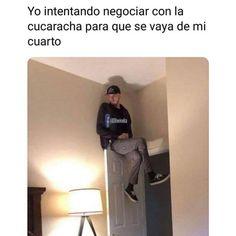 #memesespañol #chistes #humor #memes #risas #videos #argentina #memesespaña #colombia #rock #memes #love #viral #bogota #mexico #humornegro #bogota #chile #panama #españa #español #videosderisas #jajajaja #love #meme #memeespañol #latam #momaso #estadosunidos Wtf Funny, Funny Jokes, Funny Images, Funny Photos, Mexican Memes, Bts Face, Pinterest Memes, Drama Memes, All The Things Meme