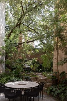 Casa Duraznos in Mexico is filled with various types of vegetation. Tropical Landscaping, Outdoor Landscaping, Outdoor Gardens, Indoor Outdoor Living, Outdoor Dining, Outdoor Decor, Interior Garden, Interior And Exterior, Interior Design