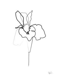 One line Iris Art Print