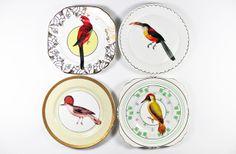 Perching Birds plate set £48.00