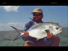 1000 images about videos on pinterest british virgin for Virgin islands fishing