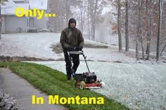 Montana's Spring   Montana Memes  Credit Tracy Lost-Bear