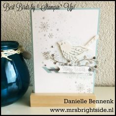 Best Birds, Perpetual Birthday Calendar & Oh, What fun stamps - Soft Sky & Whisper White cardstock - Soft Sky, Smoky Slate & Basic Gray ink - Silver Foil Sheets, Dazzling Diamonds glimmer paper & Designer Series Paper Stack Subtles - Smoky Slate stitched ribbon & Rhinestones