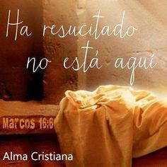 No se asusten. Ustedes buscan a Jesús de Nazaret, el que fue crucificado. Ha resucitado; no está aquí. Miren el lugar donde lo pusieron.  Marcos 16:6 Dios Habla Hoy (DHH)  ¡JESUS VIVE!