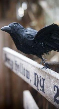 Black Bird Aged Sepia Canvas Tote Bag Steam Punk Trendy Modern Dark Gothic
