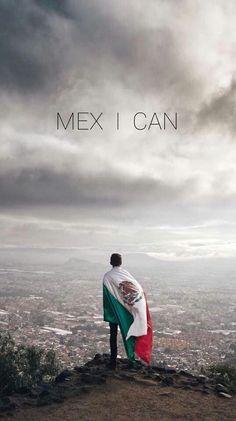 AJÁ!!  Bien orgulloso de ser mexicano el que hizo esto, y se expresa en inglés!! GENIO!!