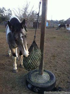 slow feeder hay | Homemade Horse Feeders Hay http://www.horsegroomingsupplies.com/horse ...