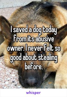 I saved a dog today from its abusive owner. I never felt so good about stealing before.