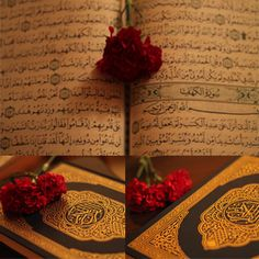 Quran Karim, Islamic World, Holy Quran, Place Cards, Place Card Holders