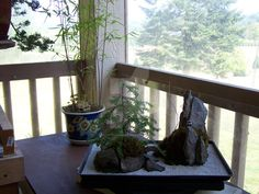 Two simple landscapes. In the foreground a tray landscape with two islands in the sand. Behind that, a miniature bamboo forest in a pot.