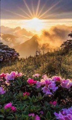 Beautiful Nature Pictures, Nature Photos, Amazing Nature, Beautiful World, Beautiful Landscapes, Beautiful Places, Landscape Photography, Nature Photography, Sunrise Photography