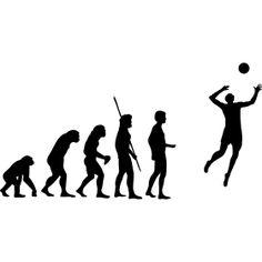 Evolution Volleyball - Die Evolution der Menschheit vom Affen �ber einen Neandertaler bis hin zum Volleyball mit Ball..