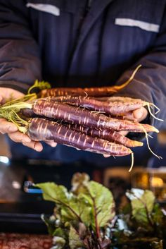 Purple Carrots with Garlic Tahini and Carrot Top Oil