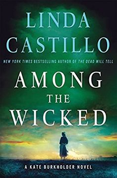 book cover of Among the Wicked
