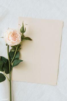 Flower Background Wallpaper, Flower Phone Wallpaper, Framed Wallpaper, Leaf Background, Flower Backgrounds, Iphone Wallpaper, Instagram Frame Template, Pink Gift Box, Invitation Mockup