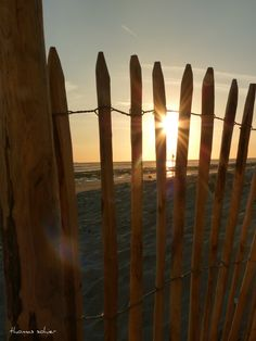 Baie de Somme, couché de Soleil derrière palissade de bois. Crotoy