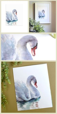 Love this swan art painting, swan nursery art, swan art print Swan Nursery Decor, Nursery Art, Watercolor Cards, Watercolor Paintings, Watercolors, Swan Painting, Home Decor Wall Art, Room Decor, Bird Art