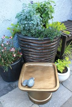 """""""We asked Fern Richardson, author of the new book, """"Small-Space Container Gardens: Transform Your Balcony, Porch or Patio with Fruits, Flowers, Foliage & Herbs"""" (Timber Press), how to bridge the gap. Her book offers suggestions ranging from upcycling and plant repetitions to spray-painting mismatched containers."""""""