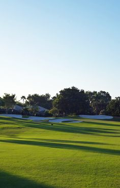 What a beautiful day on the golf course #travel #Florida #smileshare