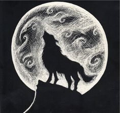 Wolf Howling at the Moon at www.michaelalydon.com                                                                                                                                                                                 More