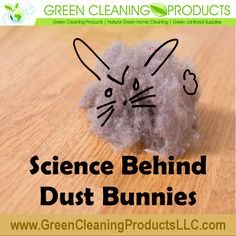 Green cleaning is the rave. Whether you use traditional toxic cleaners or new safer ones, key to being green is to clean. If you don't, dust bunnies form.