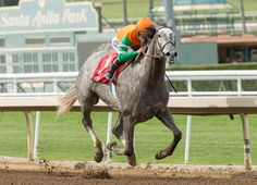 'TDN Rising Star' Unique Bella (Tapit), the overwhelming favorite for the GI Kentucky Oaks, will be forced to miss at least the Apr. 8 GI Santa Anita Oaks--if not the May 6 Kentucky Oaks itself--due …