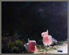 galah, oil painting Bird Pictures, Parrots, Painting Inspiration, Wildlife, Oil, Parrot, Parakeets, Butter