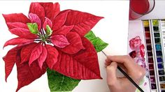 Painting your own Christmas card can be a lot of fun! Find out how to perfect this poinsettia on my website.