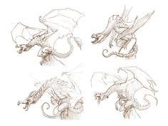 Dragon Sketches by JakeParker.deviantart.com on @DeviantArt