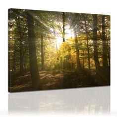 """Bilderdepot24 tableau toile """"clairière rayons de soleil"""" 120x90cm - toile tendue sur châssis bois, Image sur toile, vente directe fabricant! déco imprimée Inconnu http://www.amazon.fr/dp/B004VRMS5S/ref=cm_sw_r_pi_dp_HYMrub1TJFH9S"""