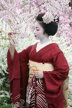 Misuzu, Okatome Okiya, Gion Higashi