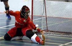 Lower goalie saving Projects