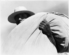 Yaqui Indian cotton worker, Arizona, ca. 1939